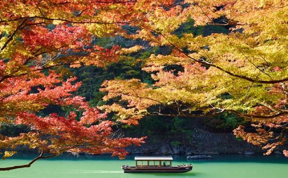 【虹夕諾雅 京都】 坐在船上欣賞楓葉的「早晨的楓葉船」企劃 在京都、