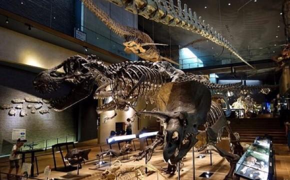 旅遊網站TripAdvisor發表世界各地旅行者心目中的「日本博物館・美術館2017」人氣前十名! TripAdvisor、
