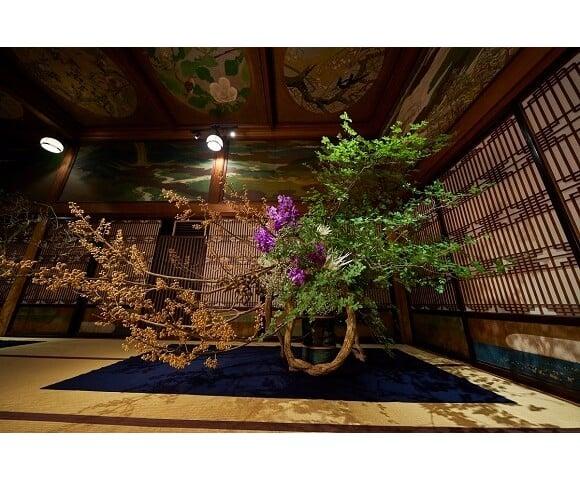 享受秋天的花草樂趣! 日本傳統文化・插花的祭典於雅敘園「百段階段」舉辦 在目黒、百段階段、