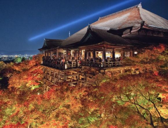 【京都・神戶・奈良】夜間點燈的7個賞楓推薦景點 在京都、在奈良、在神戸、楓葉、觀光、