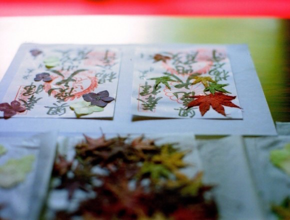 京都・柳谷觀音的賞楓活動開跑囉!楓葉限定御朱印及藝品展示也將展開 在京都、楓葉、藝術、