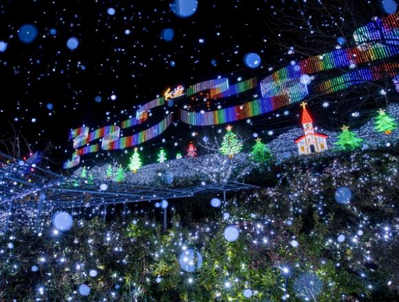 足利市 足利花卉公園的彩燈秀『光之花庭園』連續兩年獲得全國第一 在栃木、燈飾、點燈、