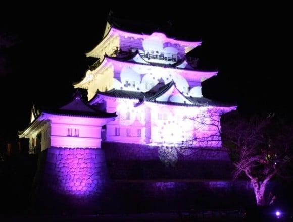 光與音樂融為一體的「小田原城 冬櫻彩燈秀」首度舉辦 在神奈川、聖誕點燈、