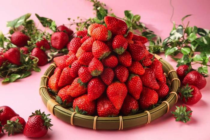 上野的餐廳「大地的贈禮」將舉辦草莓祭!還有甘王草莓吃到飽 在上野、餐廳、