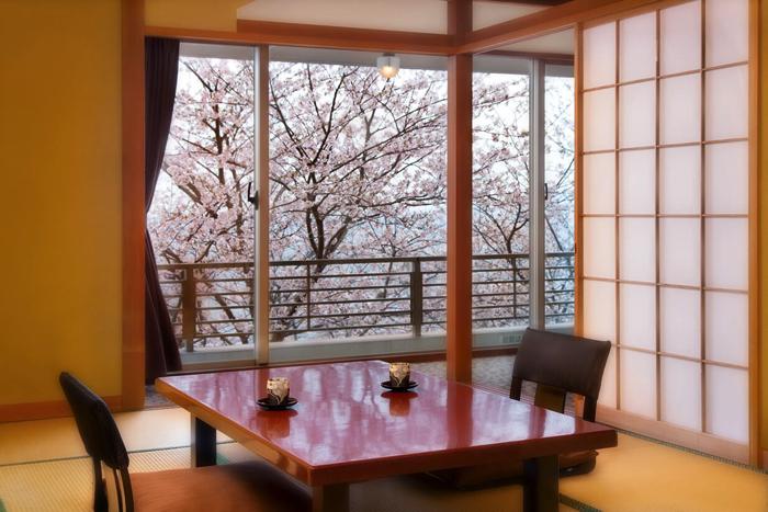 在東伊豆・北川溫泉「吉祥CAREN」享受河津櫻花祭吧 伊豆、櫻景、