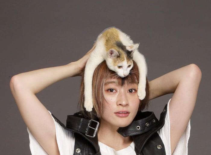 星期三的康帕內拉・KOM_I 以貓咪角色首度參與電影演出! 星期三的康帕內拉、