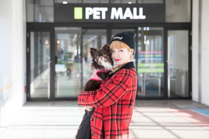 【東京散步】帶著愛犬mozuku也能逛的商店&景點巡禮 #2 寵物用品一應俱全的「pecos 幕張新都心店」前篇 PR、東京散步、矢部優奈、觀光、