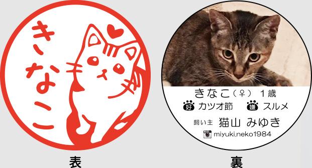 貓咪用名片