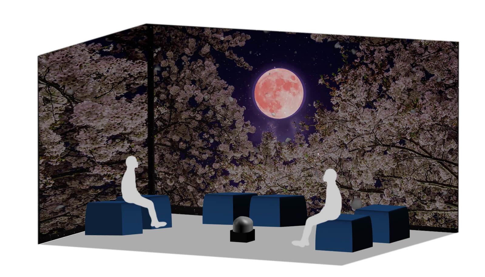在原宿體驗日本全國各地的櫻花名勝!VR體驗「Galaxy Night Blossom」登場 在原宿、