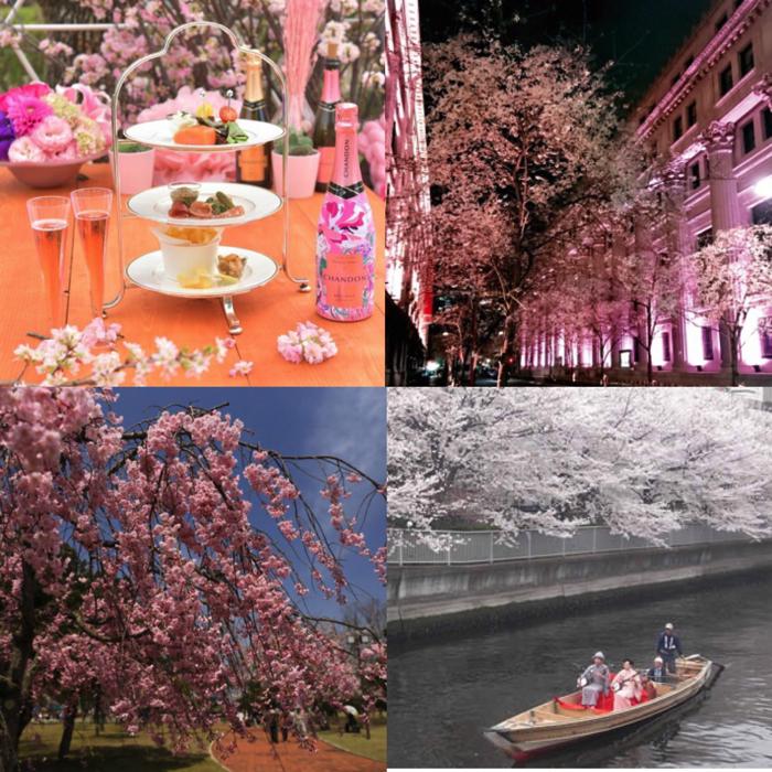 於日本各地舉辦的推薦「櫻花祭2018」統整 櫻、