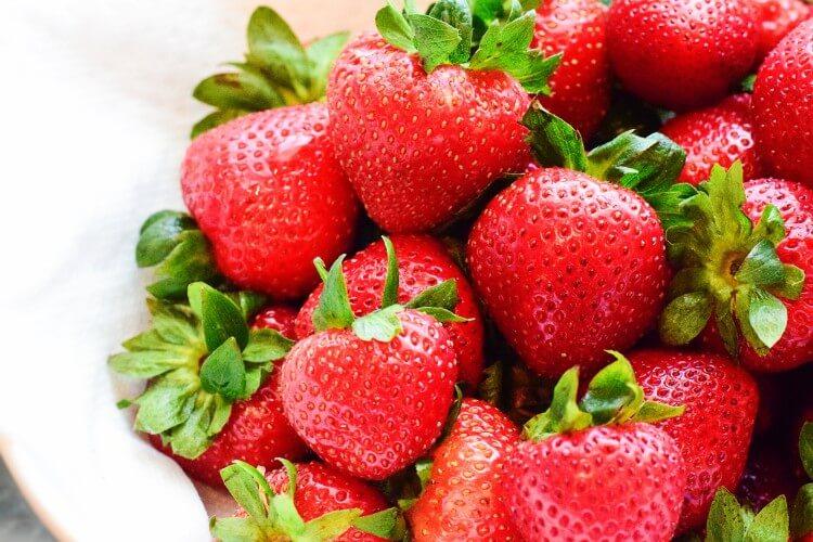 一整年都能採草莓!橫濱「東京草莓園」新開幕 在橫濱、莓、