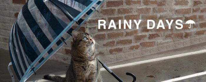 Francfranc雨具介紹雨傘雨衣雨天用品