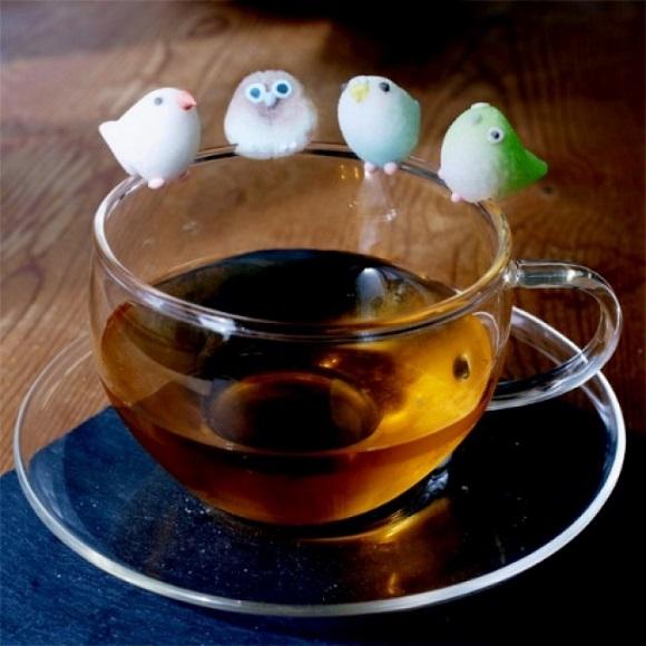 糖鳥杯緣子站立在杯緣