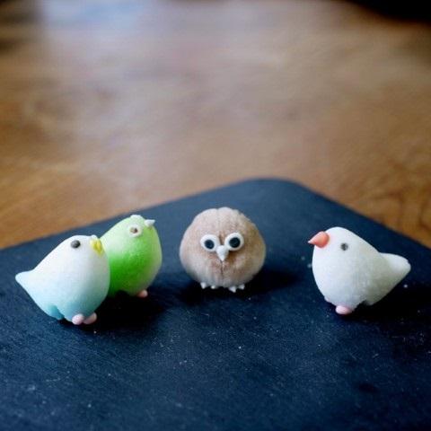 糖鳥杯緣子站立在桌上