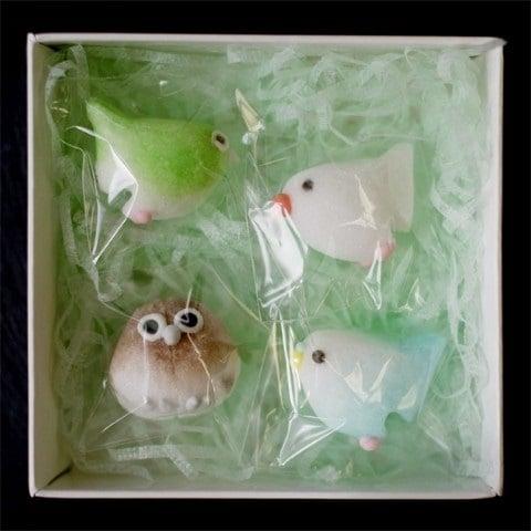 糖鳥杯緣子四款裝在盒中