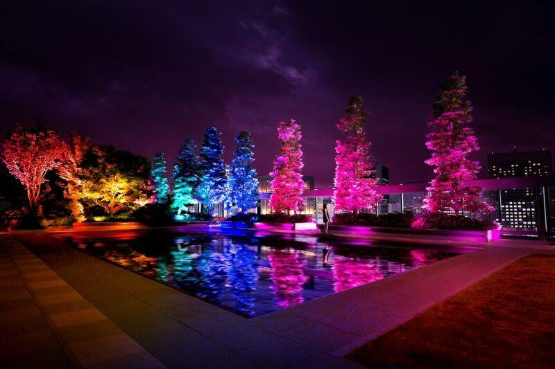 日本數位作品製作團隊teamLab 光與聲的數位藝術 將於GINZA SIX屋頂展出 在銀座、