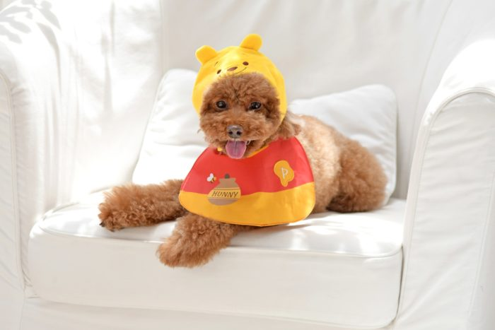迪士尼寵物商品小熊維尼系列