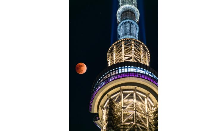 在被選為「日本百名月」的東京晴空塔®舉辦的賞月活動 東京晴空塔、
