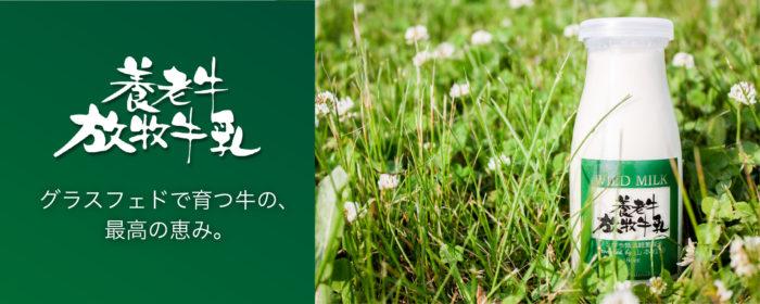 北海道山本牧場養老牛放牧牛乳