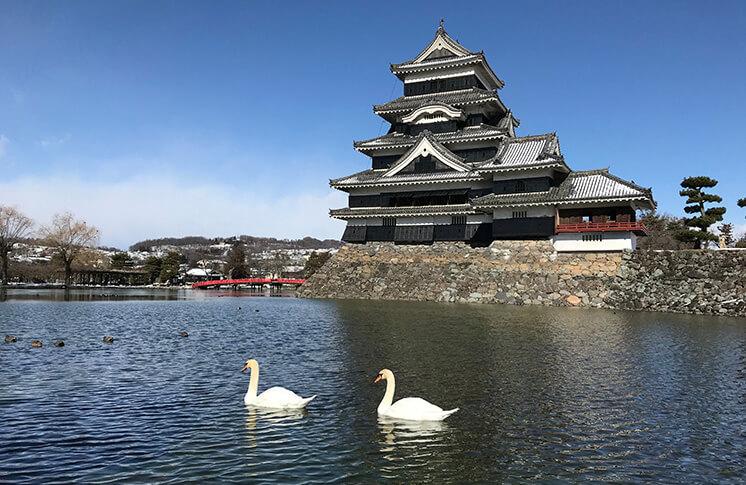 有哪一座名城是你還沒去過的?快來看看TripAdvisor發表的「由旅遊愛好者選出的日本城排名2018」 日本旅行、日本觀光、