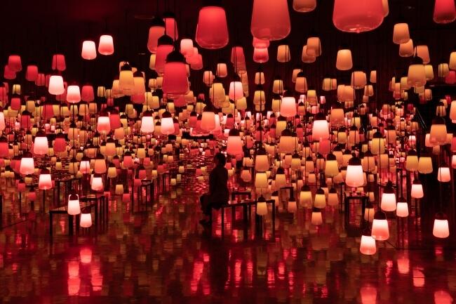 teamLab於佐賀・御船山樂園舉辦的藝術展 「秋」色登場 藝術、