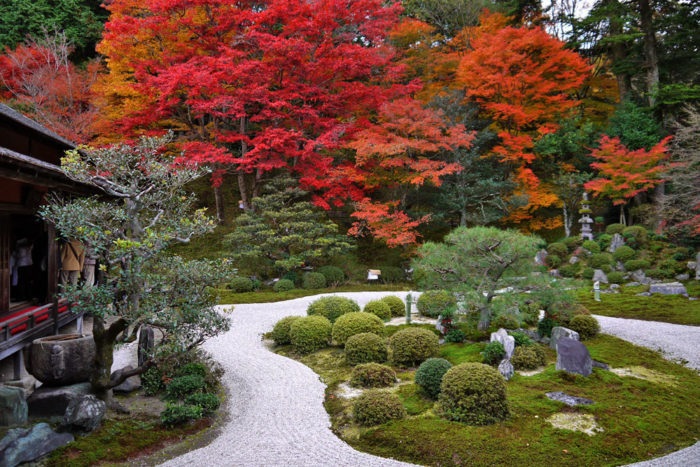 京都賞楓一日散策散步路線曼殊院庭園秋景