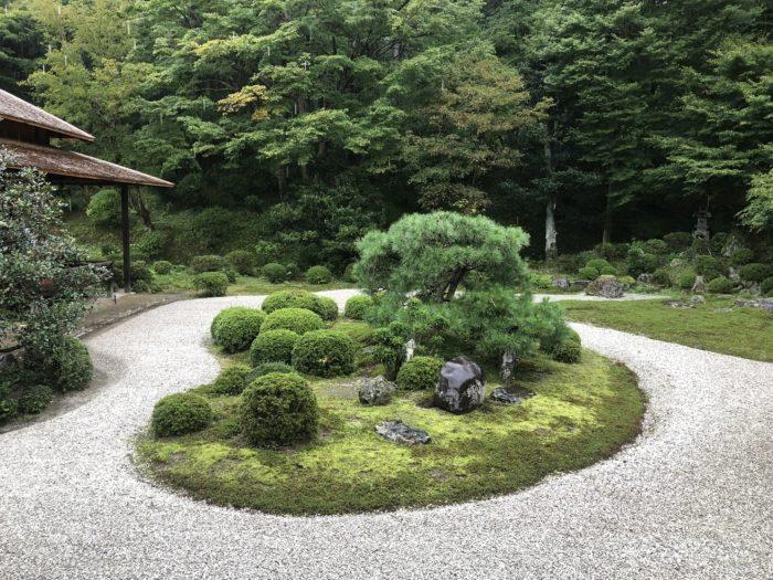 京都賞楓一日散策散步路線曼殊院庭園夏景