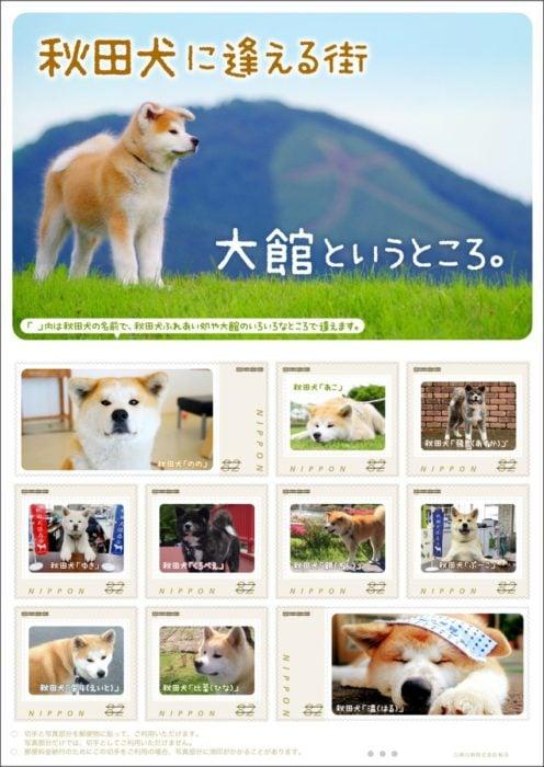 2018日本郵票邂逅秋田犬的城市 大館