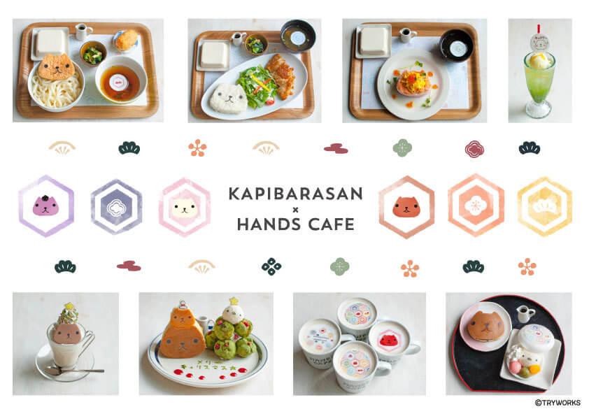水豚君 × HANDS CAFÉ聯名咖啡廳開幕 合作、在大阪、在神奈川、水豚君、澀谷