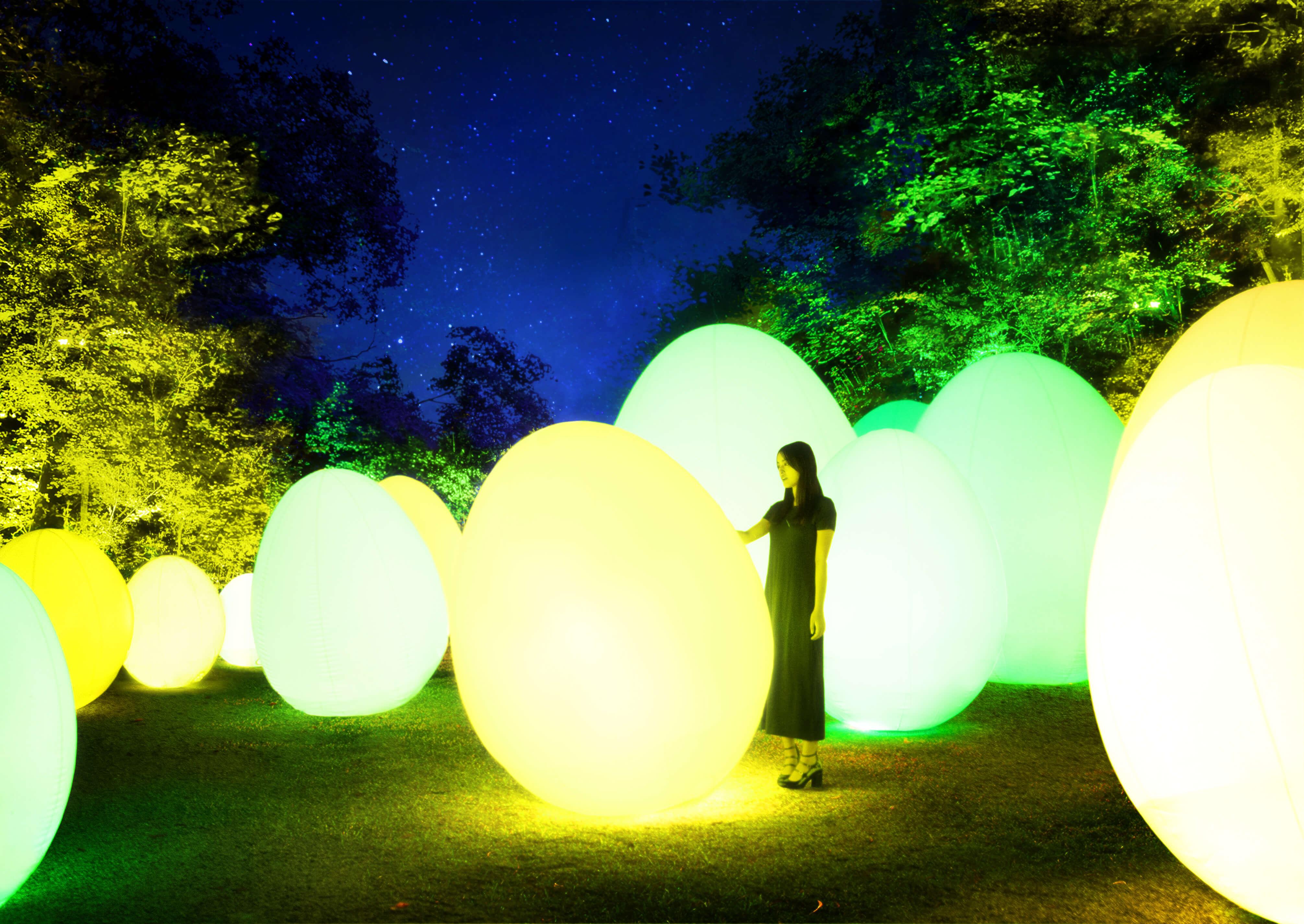 埼玉縣飯能市「metsa village」舉辦「teamLab 森與湖的光之祭」 teamlab_、在埼玉、藝術、