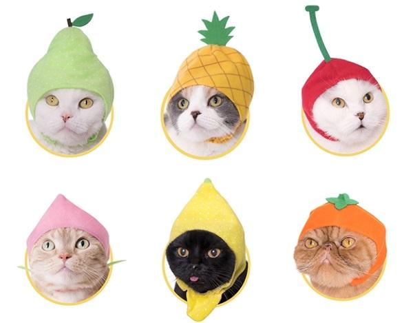 水果系列帽