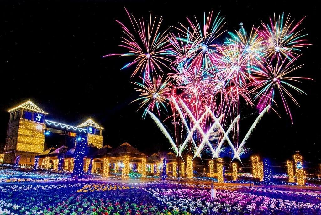 在 享受群馬花卉公園的彩燈活動 燈飾、群馬_、
