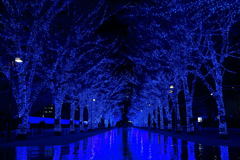 光與音樂交織而成的迷幻燈飾展!澀谷公園通「青之洞窟 SHIBUYA 」 澀谷、燈飾、