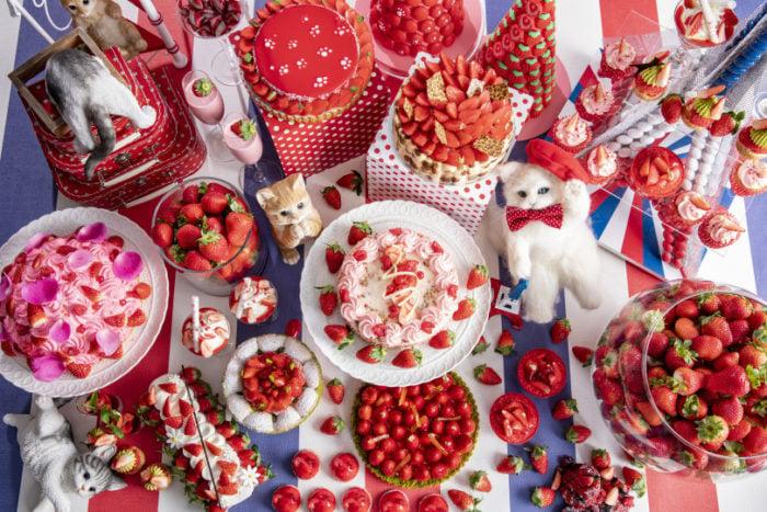 東京希爾頓貓咪主題草莓甜點吃到飽上方全系列照