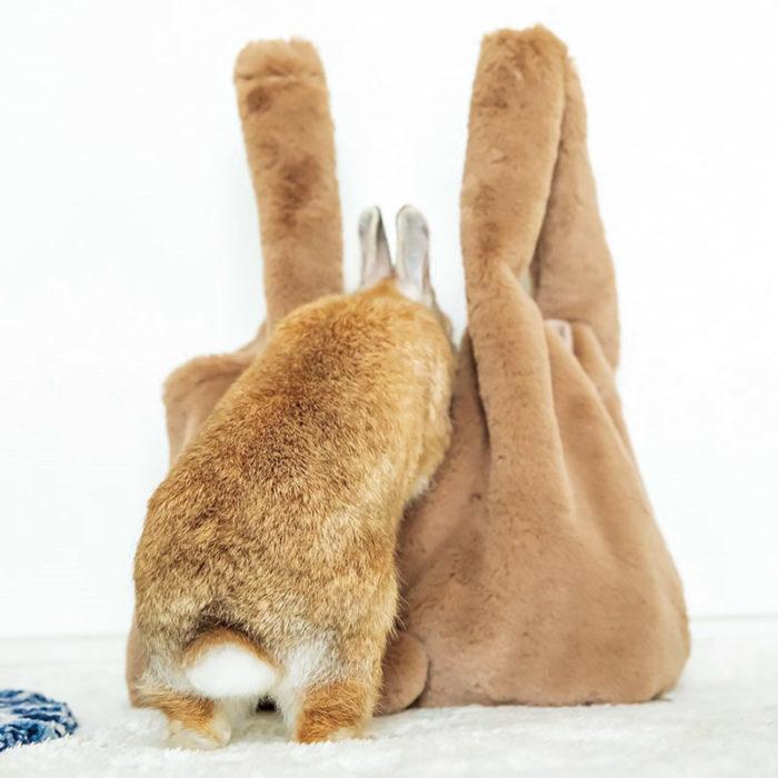 兔子也好奇屁屁包
