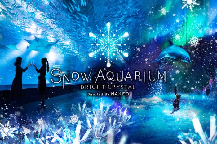「SNOW AQUARIUM」展覽海報