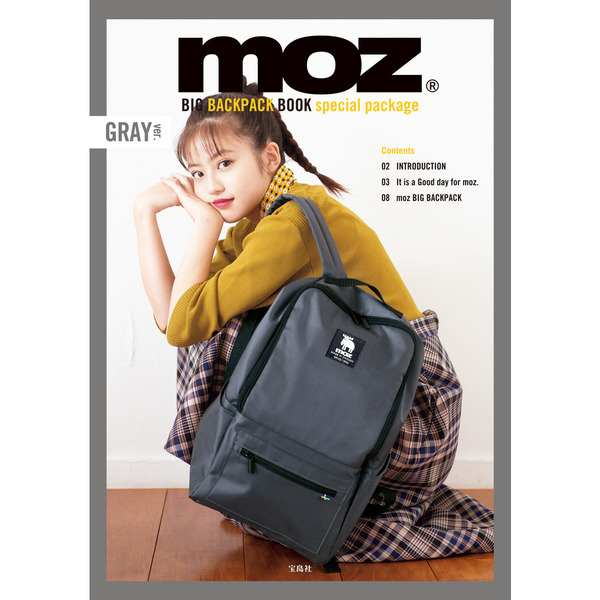 moz BIG BACKPACK BOOK special package GRAY封面