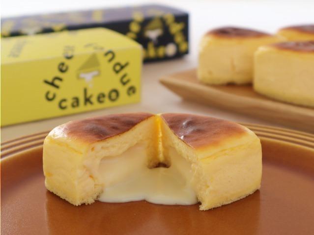 Cheese Fondue Cake