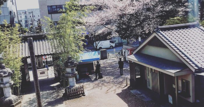 禪寺咖啡廳 Bozu'n coffee櫻花