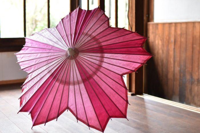 傘日和_kasabiyori_sakurakasa_櫻和傘_和樂器band