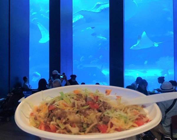 沖繩塔可飯