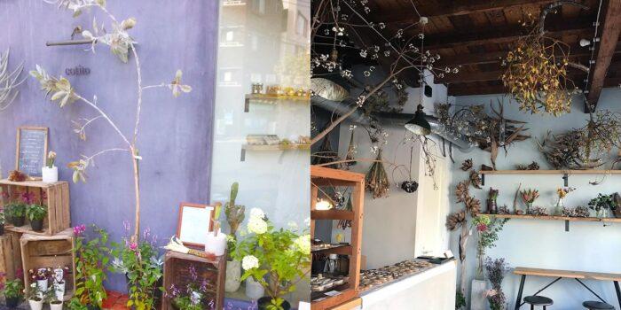 東京花草系咖啡店-cotito