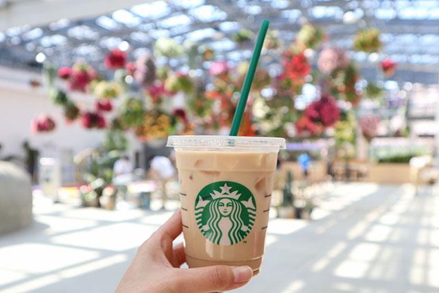 坐在溫室裡喝咖啡!【東京近郊】享受四周被花朵環繞的「星巴克咖啡HANA・BIYORI店」